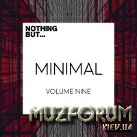 Nothing But... Minimal, Vol. 09 (2017)