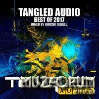 Tangled Audio: Best Of 2017 (2017)