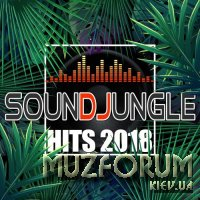 Soundjungle Hits 2018 (2018)