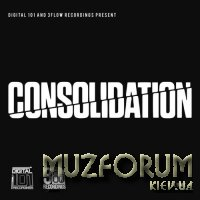 Digital 101 And 3Flow Recordings Present: Consolidation Vol. I (2018)