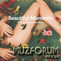 Beautiful Moments Chill Out Downtempo Music (2019)
