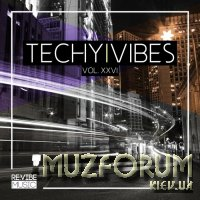 Techy Vibes, Vol. 26 (2019)