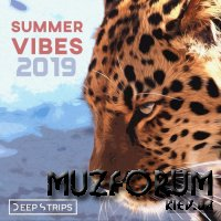 Deep Strips - Summer Vibes 2019 (2019)