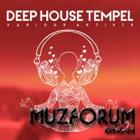 Deep-House Tempel Vol 4 (2020)
