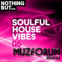 Nothing But Soulful House Vibes Vol 06 (2020)