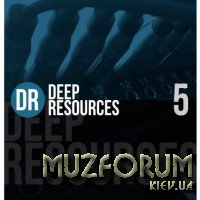Deep Resources, Vol. 5 (2020)