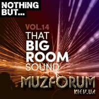 Nothing But... That Big Room Sound, Vol 14 (2020)